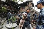 Китай может начать экспорт свинины в Россию