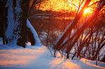 Прогноз погоды на выходные и следующую неделю с 31 января по 9 февраля