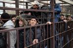 С 1 января изменились правила выдачи разрешения на работу для безвизовых иностранцев