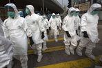 В Китае описана смерть от нового штамма птичьего гриппа H10N8