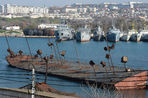 Читатель «Газеты.Ru» Елена Замяткина о том, как «город русских моряков» вновь меняет родину