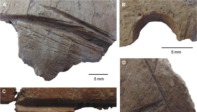 ВТурции найдены черепа времен неолита, украшенные резьбой
