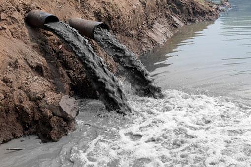 Росприроднадзор возбудил административное дело по факту разлива озера с канализационными отходами в Подмосковье