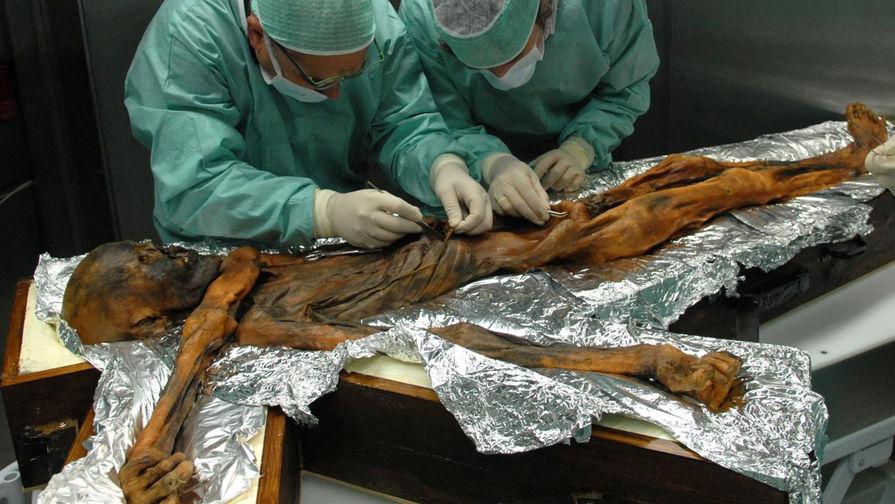 Ученые изучили  желудок 5000-летней мумии ипришли кинтересным выводам
