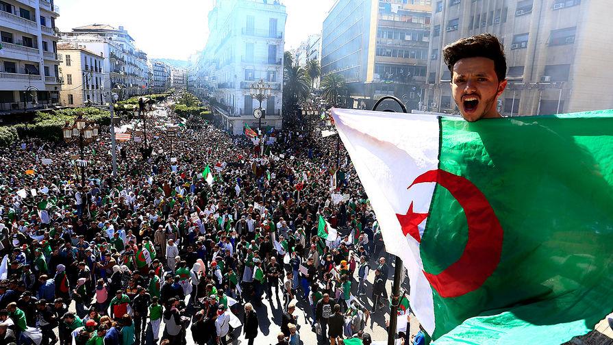 Франция в опасности? К чему ведут протесты в Алжире