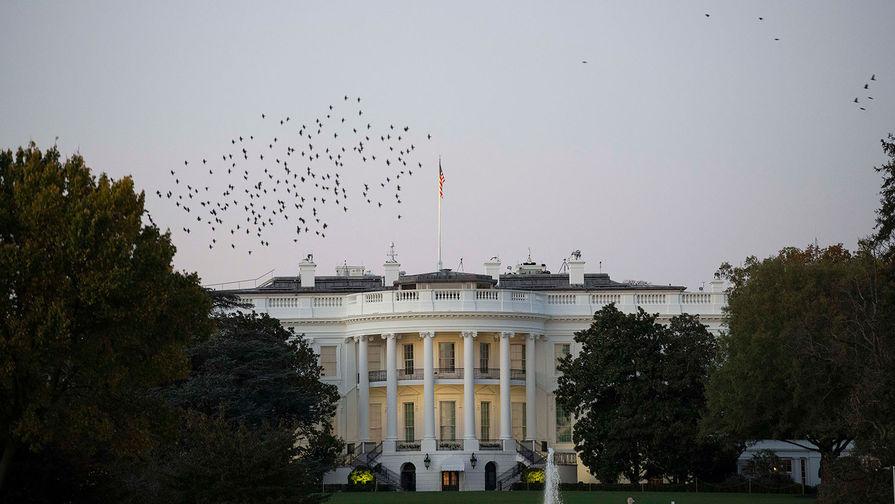 Белый дом потратит на чистку ковров $44 тысячи
