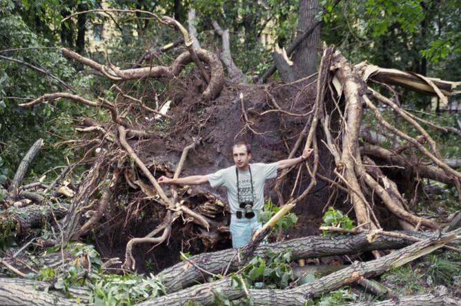 1998 год. Поваленные деревья в результате урагана