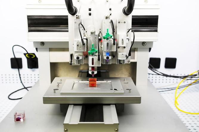 Процесс печати сердца на 3D-принтере, 15 апреля 2019 года