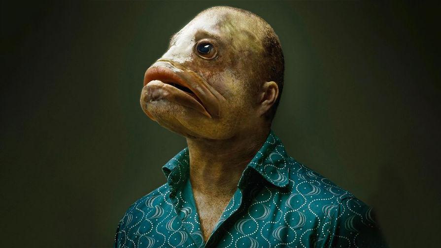 Фото хищных рыб в реке ботаническая