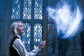 «Гарри Поттер и орден Феникса» (2007)