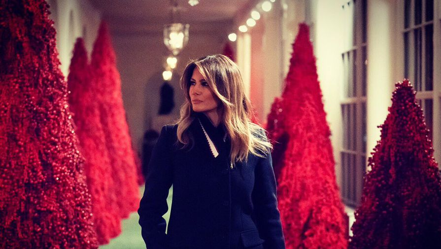 Меланья Трамп вслед за мужем раскритиковала СМИ