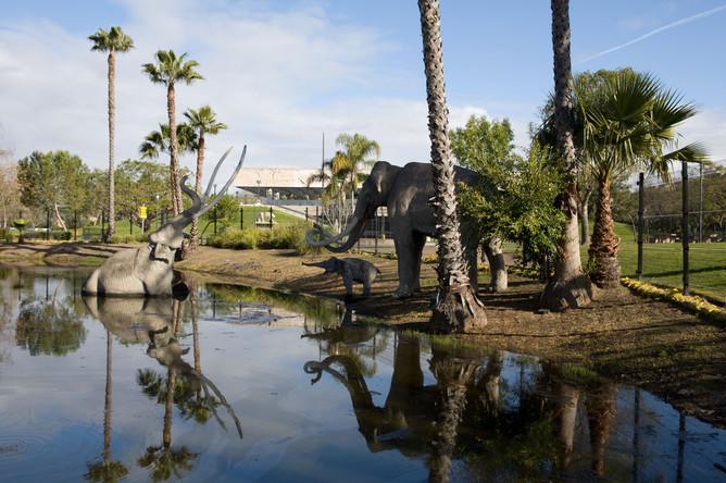 Парк на территории Ранчо Ла-Брея