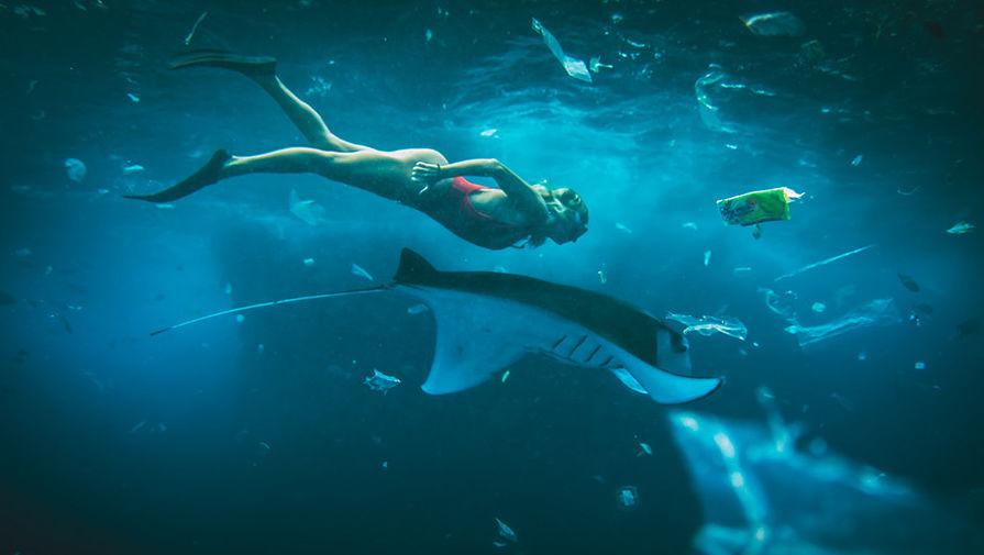 Океаны Земли поголубеют на 50%