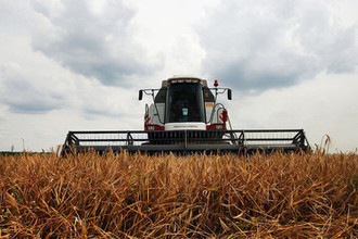 В ожидании урожая: как вырастут цены
