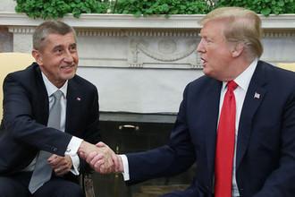Премьер-министр Чехии Андрей Бабиш и президент США Дональд Трамп во время встречи в Овальном кабинете Белого дома, 7 марта 2019 года