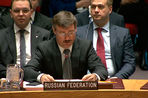 Исполняющим обязанности постпреда России при ООН стал Петр Ильичев