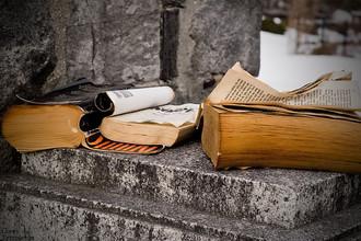 Книги уступают место постингам и твитам