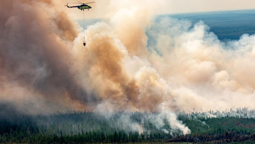 В России ликвидировано 35 лесных пожаров за сутки
