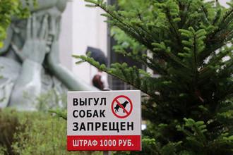 Наказать рублем: как вырастут штрафы за хулиганство