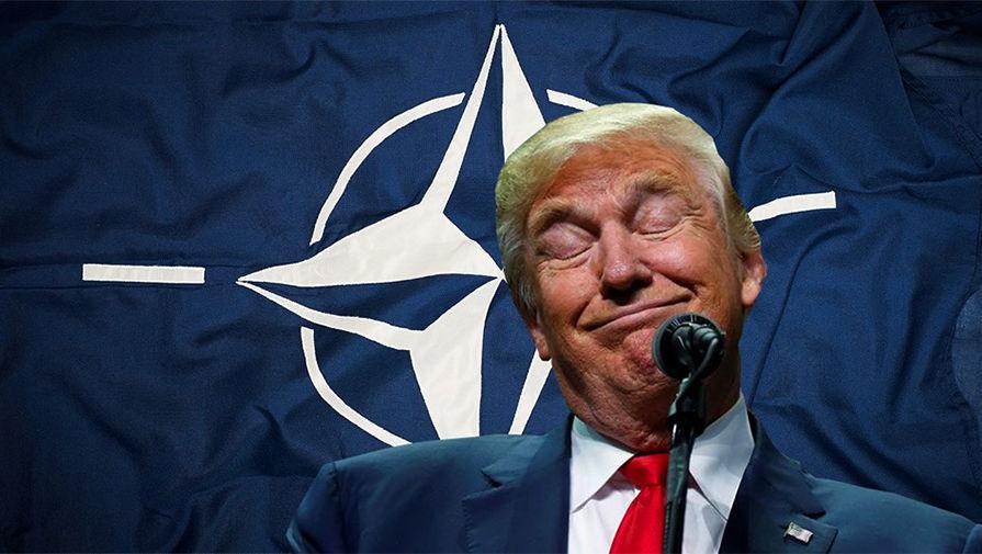 Картинки по запросу нато трамп