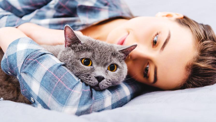 Опрос выявил, что россияне предпочитают заводить кошек