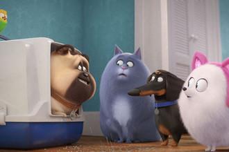 Кадр из мультфильма «Тайная жизнь домашних животных 2» (2019)
