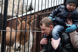 В Московском зоопарке прошла акция «Мы скучаем без вас зимой»