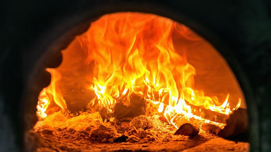 Сотрудники органов опеки в Хакасии ответят за сожжение младенца в печи