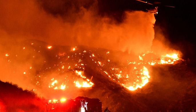 Коалы гибнут тысячами: как Австралия страдает от пожаров