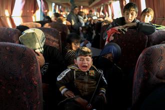 Автобус с беженцами из контролируемого террористами ИГ (запрещенная в России организация) региона в Ираке, 22 февраля 2017 года