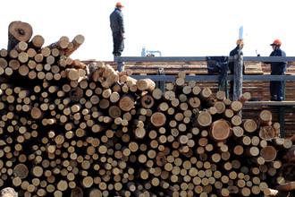 Минпромторг предлагает продлить субсидии лесообрабатывающим компаниям