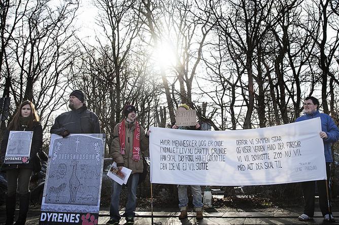Демонстранты, протестующие против убийства жирафа, рядом с Копенгагенским зоопарком