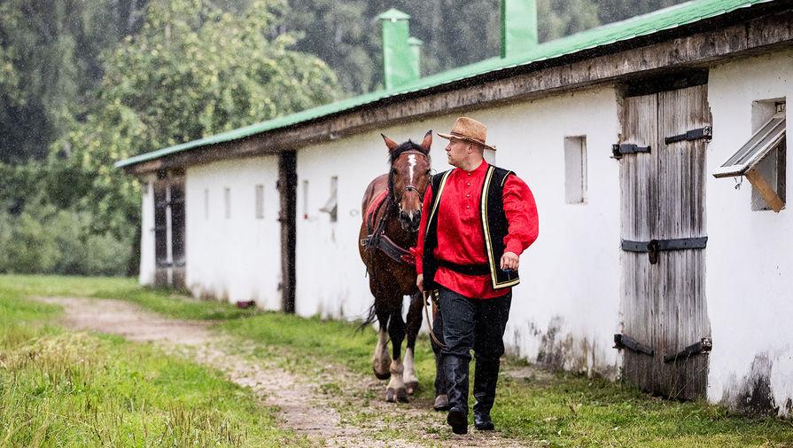 На деревню дедушке: в России займутся развитием сельского туризма
