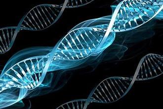 Генная терапия может вывести на принципиально новый уровень лечение наследственных заболеваний