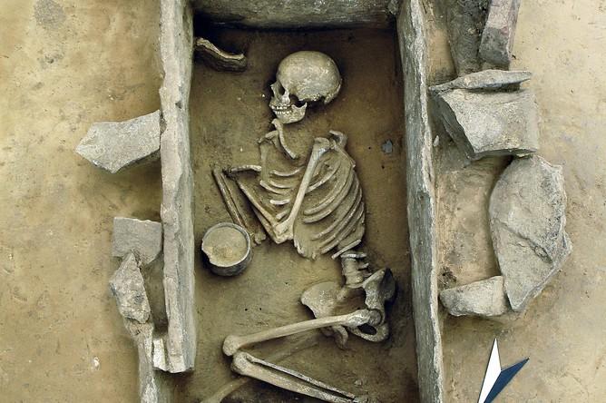 Останки людей, чьи ДНК использовались в исследовании