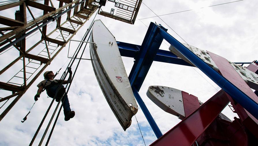 Ограниченный ресурс: российских запасов нефти и газа хватит на 100 лет