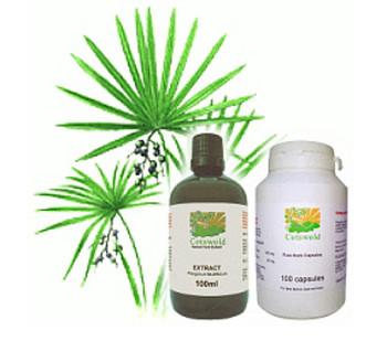 Простатит пальмы цефтриаксон от простатита форум