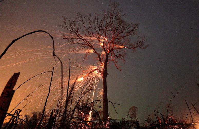 Пожар в лесах Амазонки в Бразилии, сентябрь 2019 года