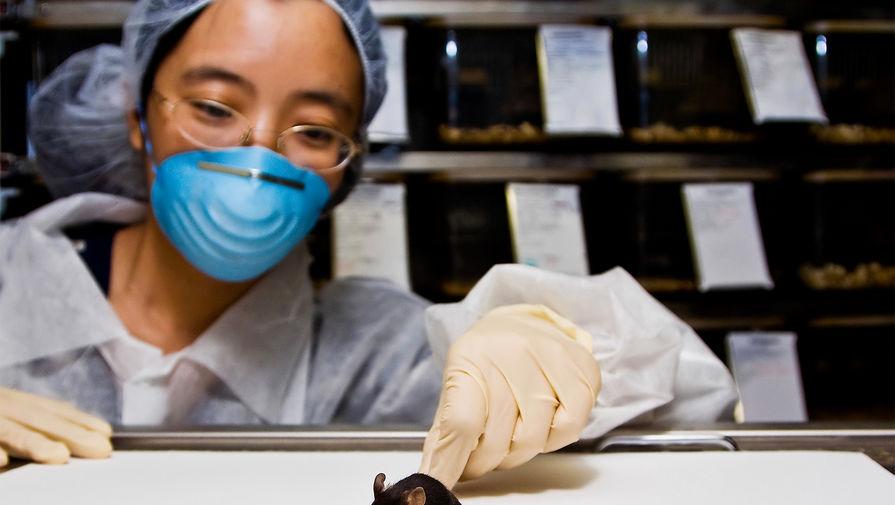 Центр Гамалеи закупит несколько тысяч грызунов для тестирования новой вакцины от COVID-19