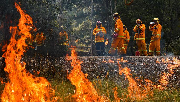 Виновато потепление: миру предрекли участь Австралии