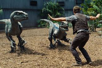 «Мы пытаемся разобраться, как жить сдинозаврами»