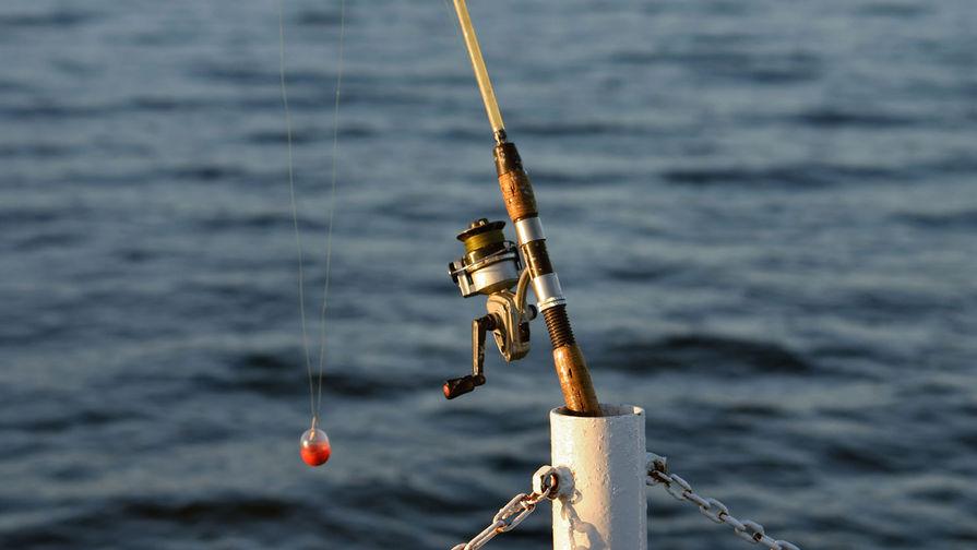 Правительственная комиссия поддержала идею о продаже улова, пойманного рыбаками-любителями