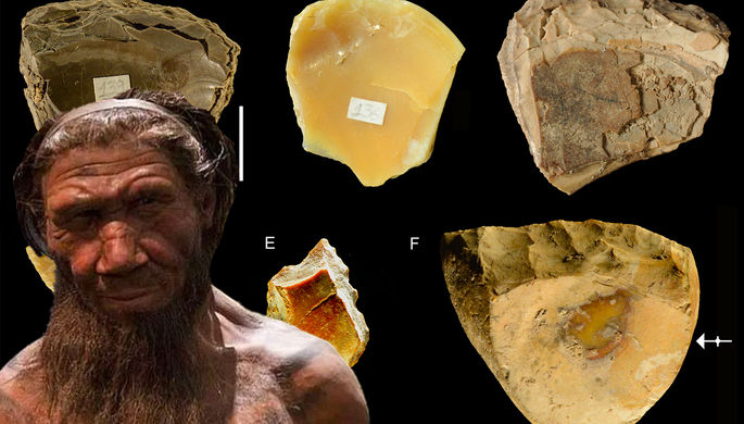 Первые дайверы: как неандертальцы ныряли за ракушками