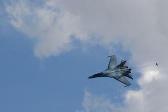Стокгольм вызвал посла: перехват Су-27 рассердил шведов