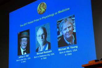 Нобелевский комитет присудил премию в области физиологии или медицины Джеффри Холлу, Майклу Росбашу и Майклу Янгу