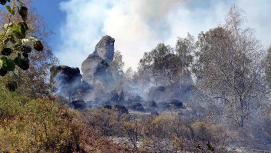 Более 800 человек эвакуировали из детского лагеря в Башкирии из-за природного пожара