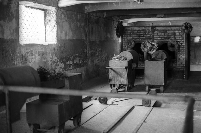 Первый концлагерь был создан в окрестностях городка Освенцим в апреле 1940 года по приказу рейхсфюрера СС Генриха Гиммлера