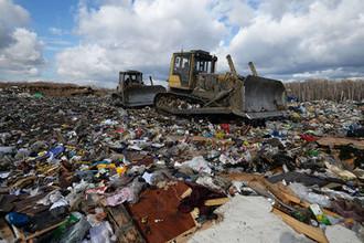 Вывоз мусора пересчитают: власти изменили тариф