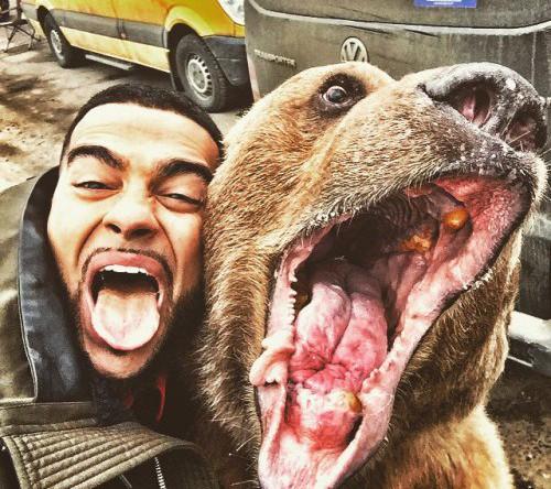 Весной 2015 года популярный российский рэпер Тимати опубликовал фото, на котором он стоит в обнимку с медведем. «Обычное русское селфи» — так прокомментировал фото музыкант
