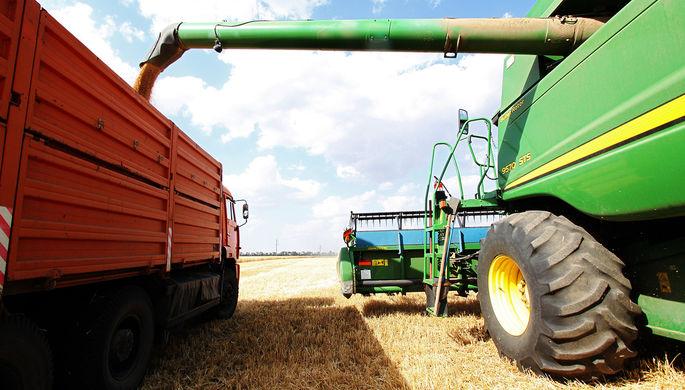 Хлебушек врозь: российская пшеница станет дефицитом